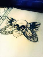 Butterfly Skull by Hausofch