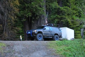 Truck in from of a Large Redwood Tree by RayMackenzie