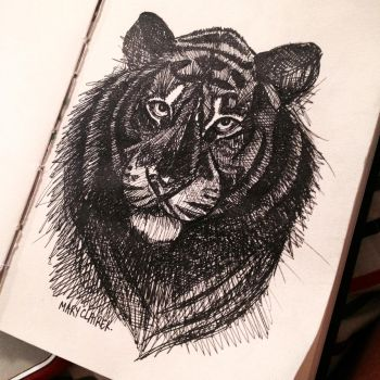 Scribbly Tiger by mclairelxs