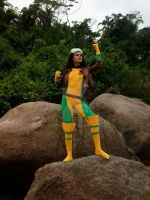 Rogue by LaurinhaxD