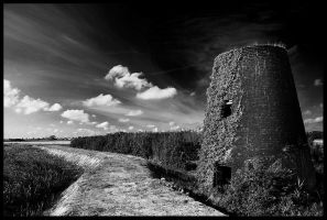 Old Hall  Drainage Mill by FreddyC