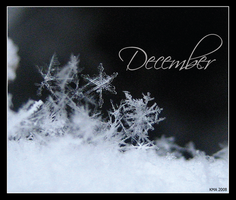 December by Lil-Miss-Strange
