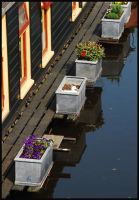 Living afloat at Groningen II by Esperimenti