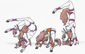 Contortionist Triplets by Shara-Moonglow