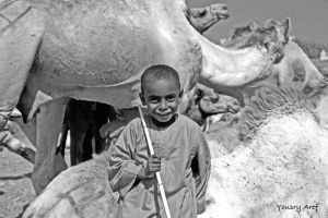 camels boys more by Nile-Paparazzi