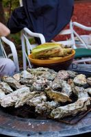 Oyster on the Grill by ThomasVo