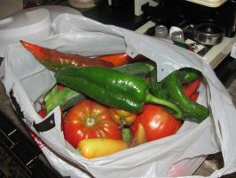 Fresh Peppers and Tomatoes by DragonoftheEastblue