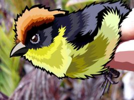 Bird 2D Vector by N3oDoc