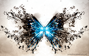 Papillon by Junleashed