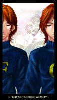 .: The Weasley Twins :Long: :. by daeds