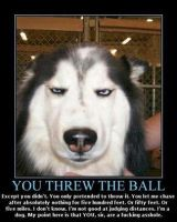 you threw the ball by TeamRocketJewels