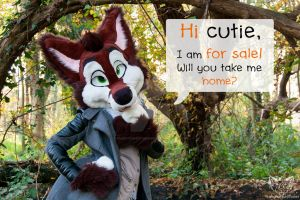 Hi cutie, I am for sale! take me home by FurryFursuitMaker
