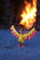 #146 Moltres by AnnalaFlame