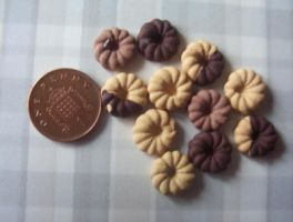 MINIATURE BISCUITS by Victim-RED