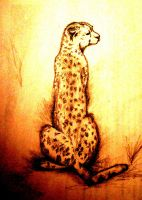 Leopardo by Ajidah210