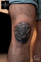 Rose by Anderstattoo