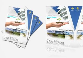 Annual Reports by gilang2007