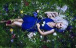 The secret garden by Liancary-art