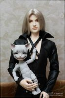 Sephiroth and Katze by scargeear
