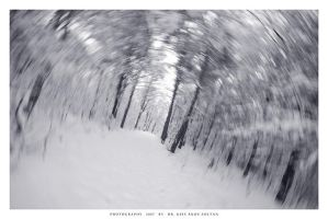 Winter tunnel by DimensionSeven