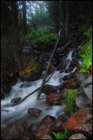 Stovepipe Creek Redux by wyorev