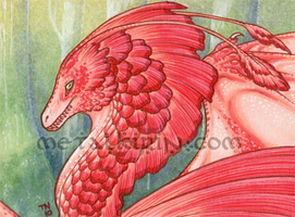 Red Lace Dragon ACEO by thedancingemu