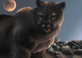Mountain Lion by EvaLawliet