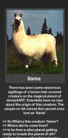 All llama queries here.... by 878952