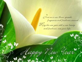 New Year HD Wallpapers 2015 by mudassarsaleem92