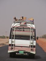 Goats on the Bus, Sudan by Jenvanw
