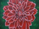 Red Dahlia by Link-of-the-twilight