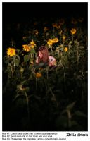 In the Sunflowers.11 by Della-Stock