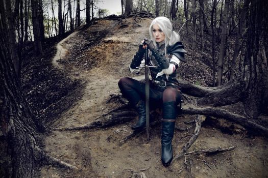 The Witcher saga - Cirilla - The Lady of the lake by love-squad