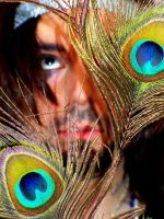 feelings and feathers by Matthew-Icarus