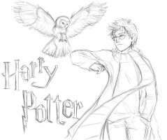 Harry and Hedwig by MonsieArts