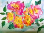 wild roses by Nyriea