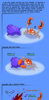 what happens after you release a pokemon? by KronnicK