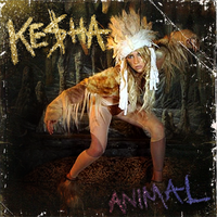 Ke$ha - Animal by HollisterCo