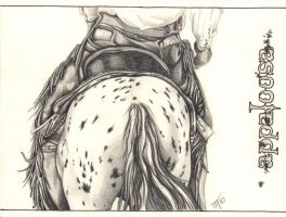 Appaloosa by NadineThome