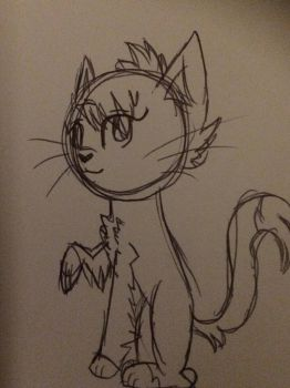 I couldn't sleep so I drew a crappy cat picture by Midnight-Absol