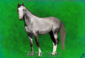 With You by Artistico-Sonar