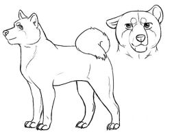 Akita-spitz reference lines by Gingastar18