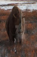 Woolly Rhino (Coelodonta antiquitatis) by Leogon