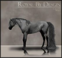 Royal Be Design Reference by Printed-Shadows