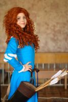 Princess Merida by fenixfatalist