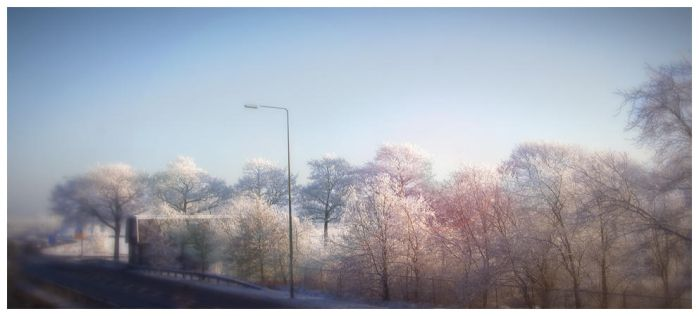 Snow-covered treetops by Martijn86