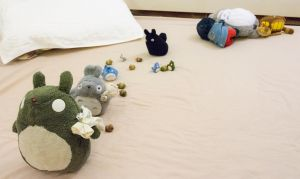 Totoro and Acorns by mnjul