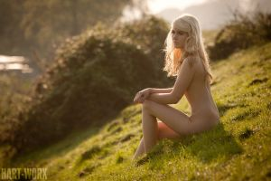 this was the first sunlight by Hart-Worx