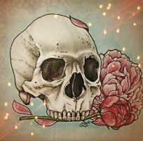 Skull 1 by underneath-the-paint