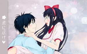 kimi ni todoke  wallpaper by shera00